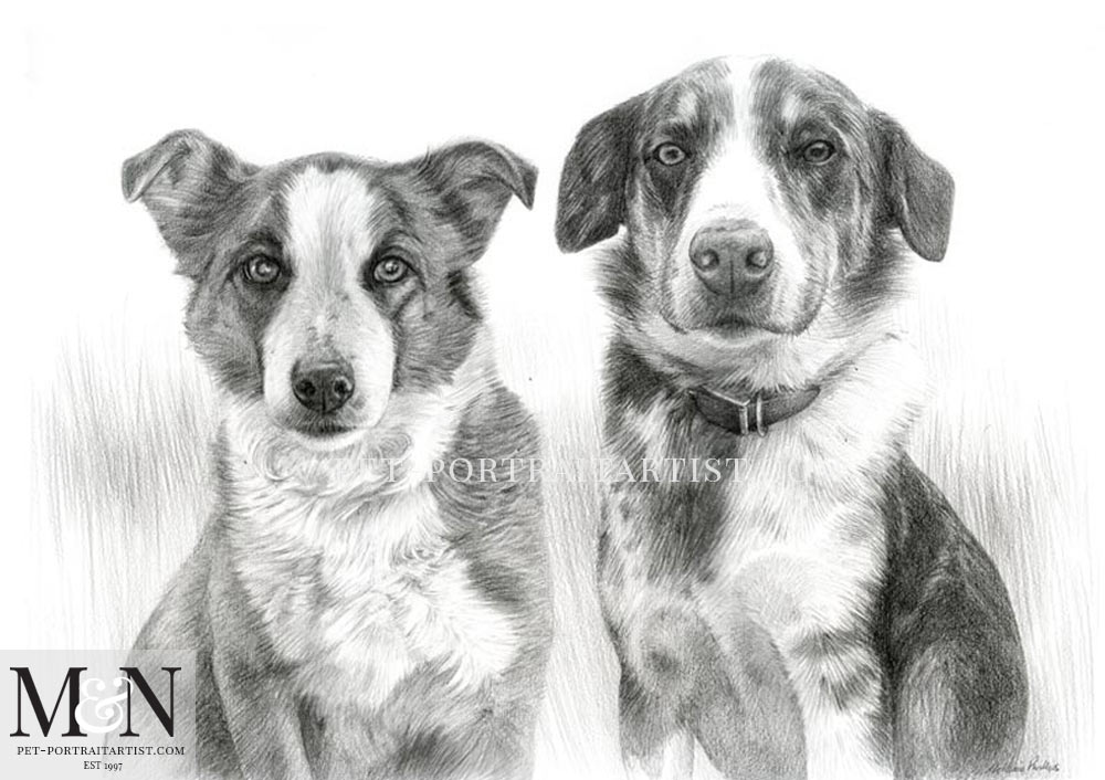 Pencil Portrait of Non and Stanley