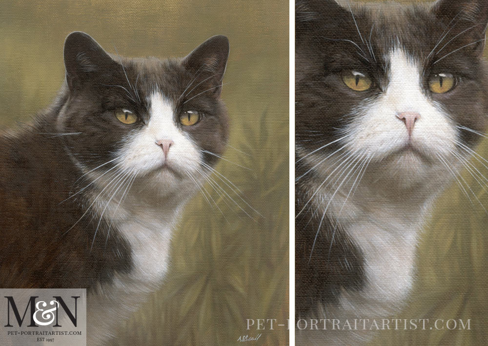 Cat Oil Portrait of Purdy