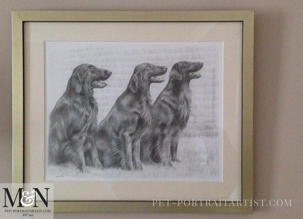 Pencil Pet Portrait of Jenson, Liffy and Forest