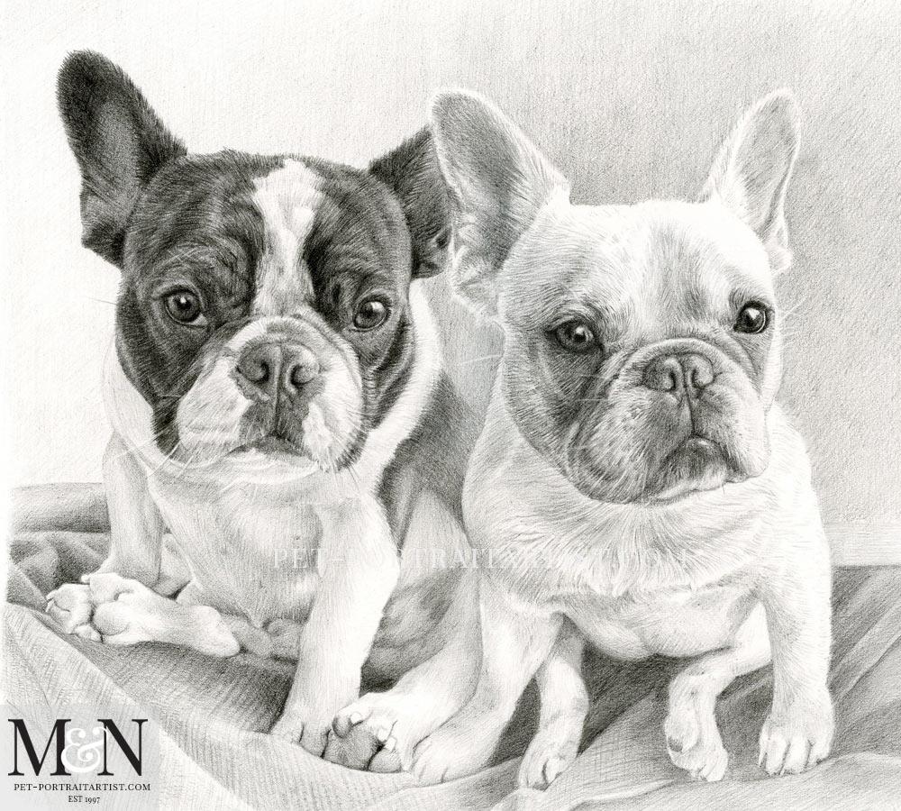 Pencil drawing of Junji and Daisy