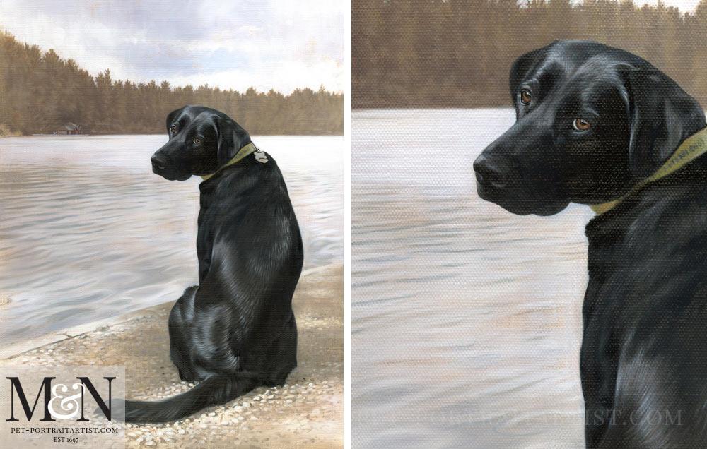 Dog Portrait of Patsy