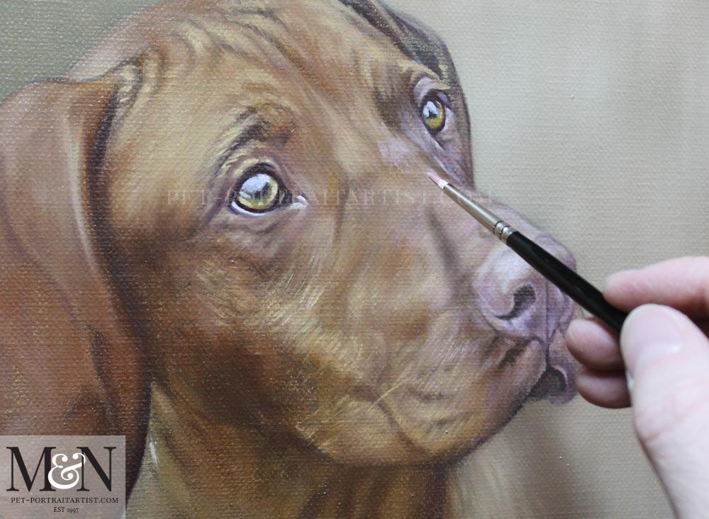 Oil Pet Portrait of Jack