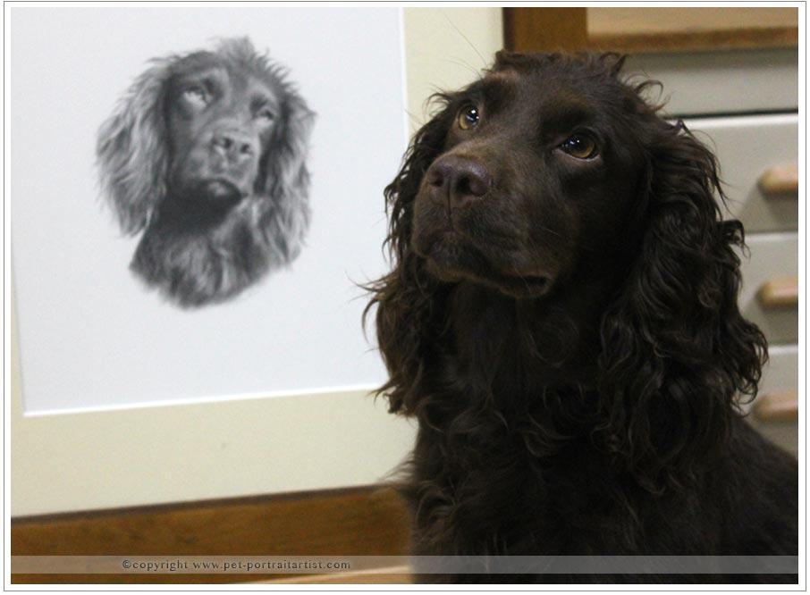 Happy Pet Portraits Clients