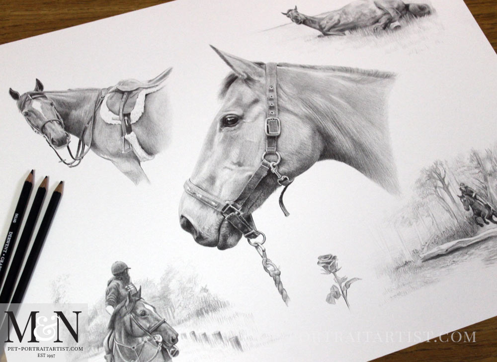 Pencil Horse Montage of Rose