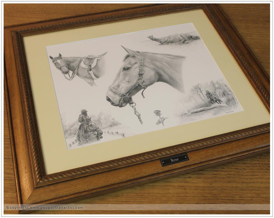 pencil-pet-portrait-montage-framed-3