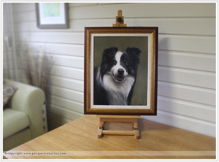 Collie-portrait-oils-10