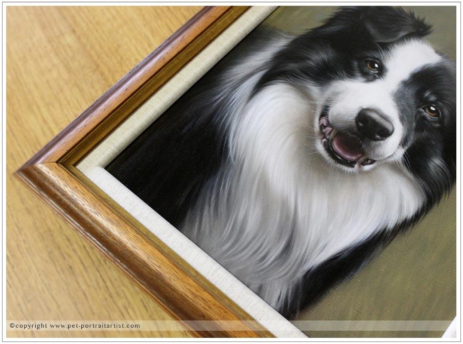 Collie-portrait-oils-11