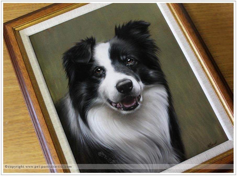 Collie-portrait-oils-12