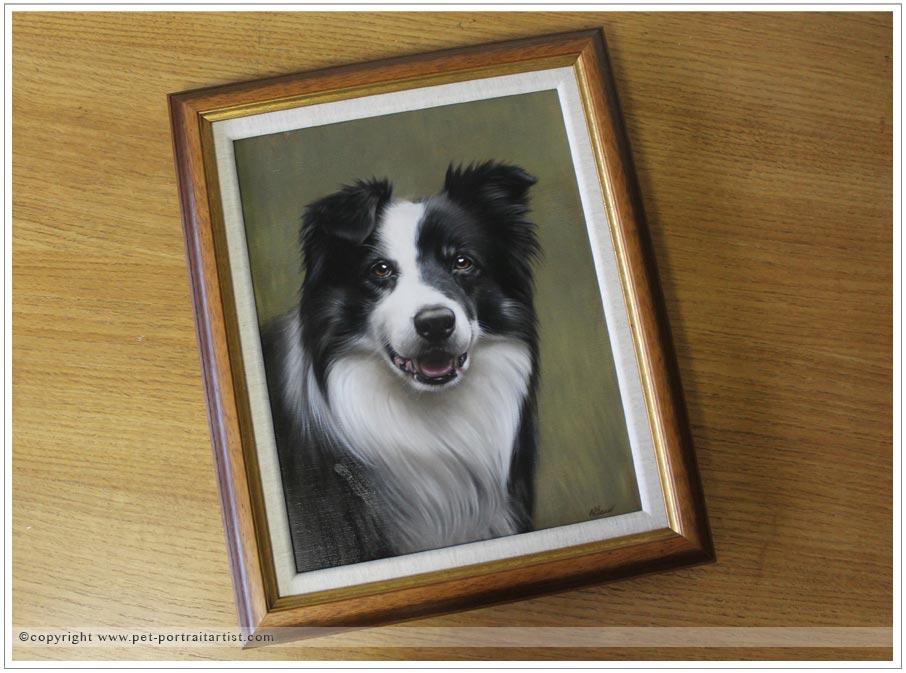Collie-portrait-oils-8