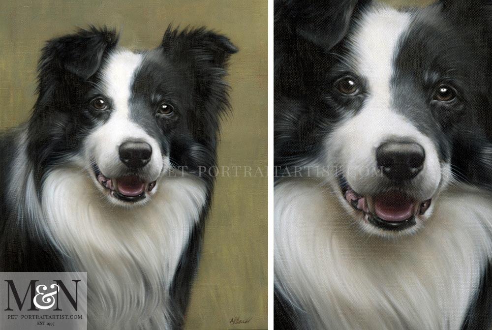 Oil Pet Portrait of Sonny