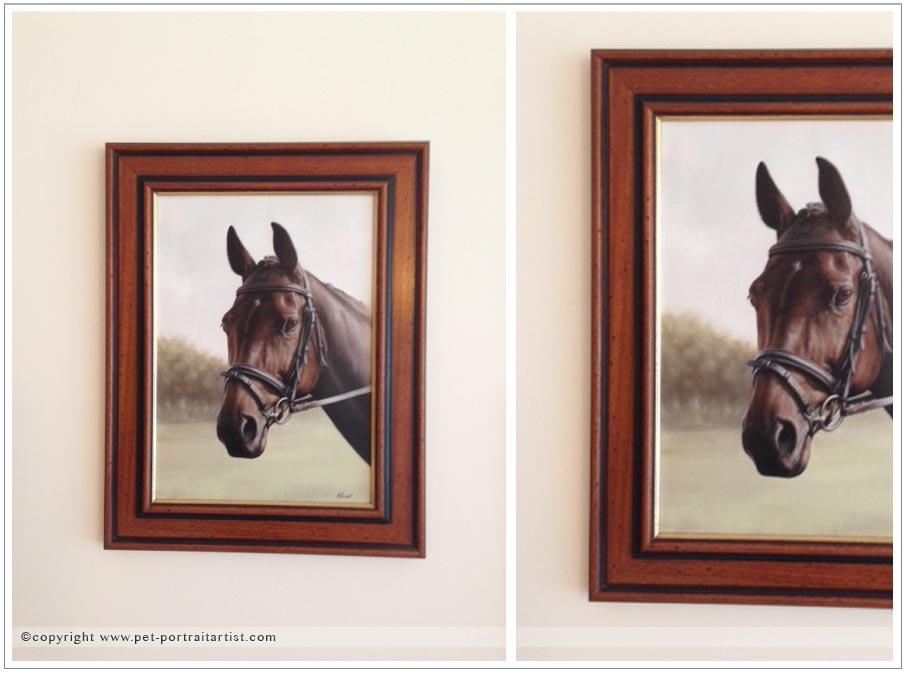 leah-horse-portraits