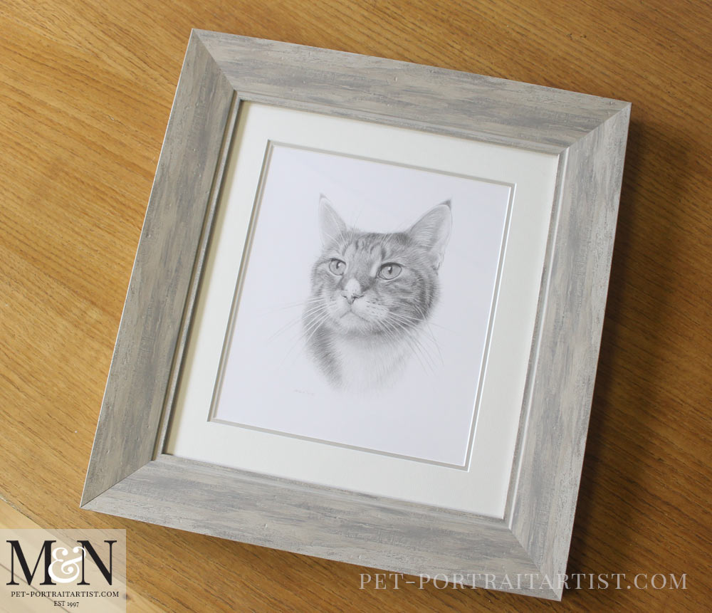 Cat Pet Portrait of Tyson