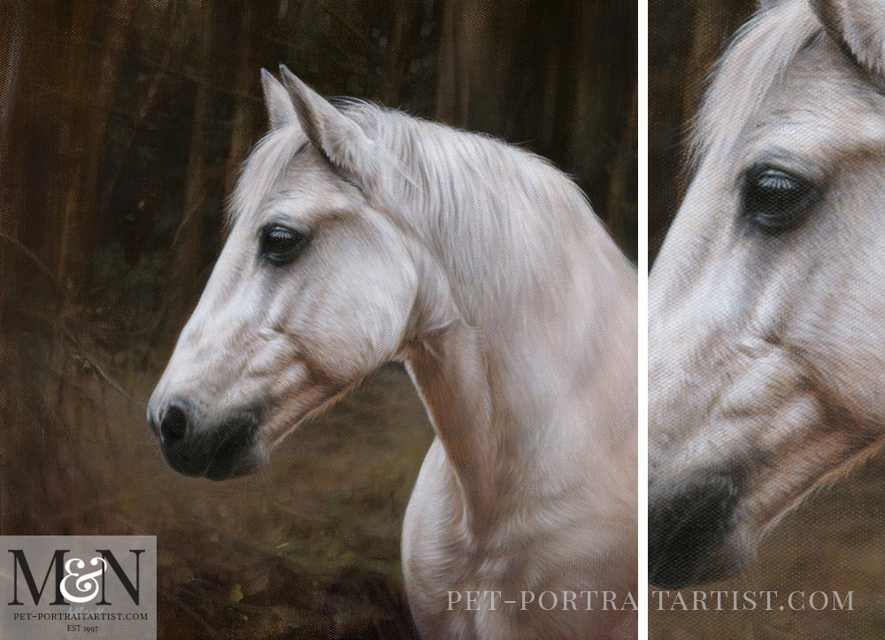 Horse Oil Painting of Chico