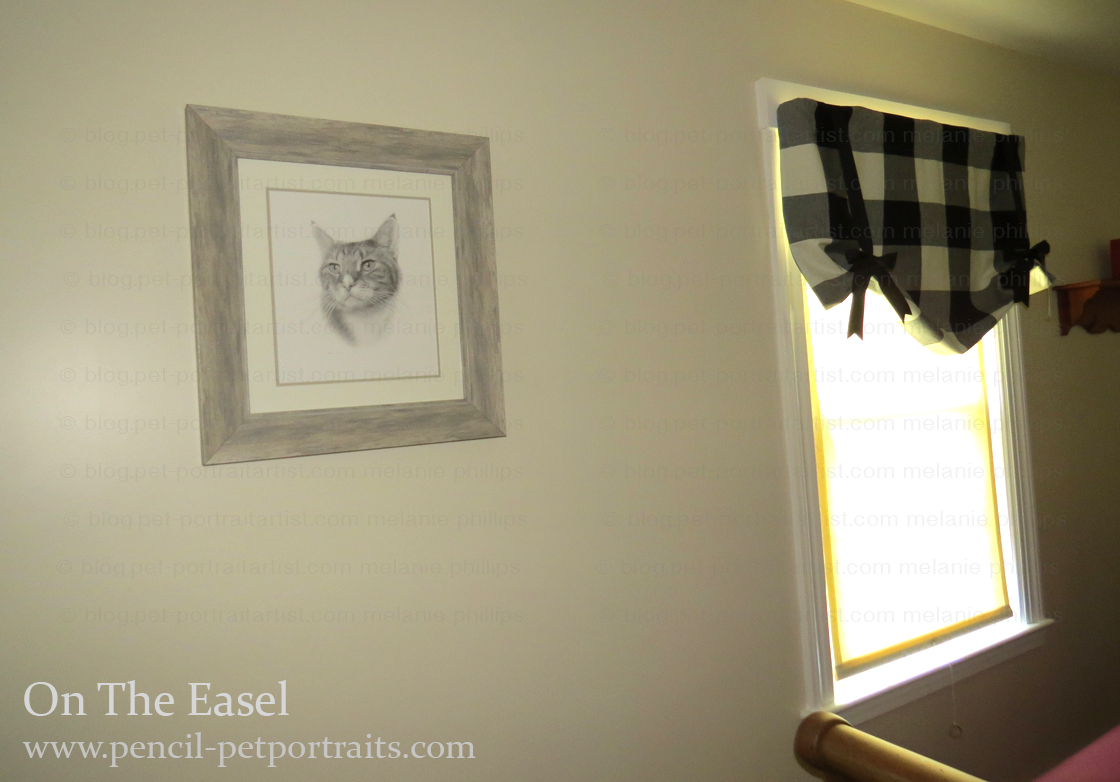 Cat Pencil Portraits - Happy Clients