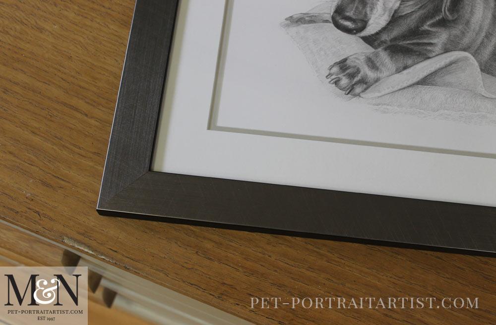 Dachshund Pencil Portraits