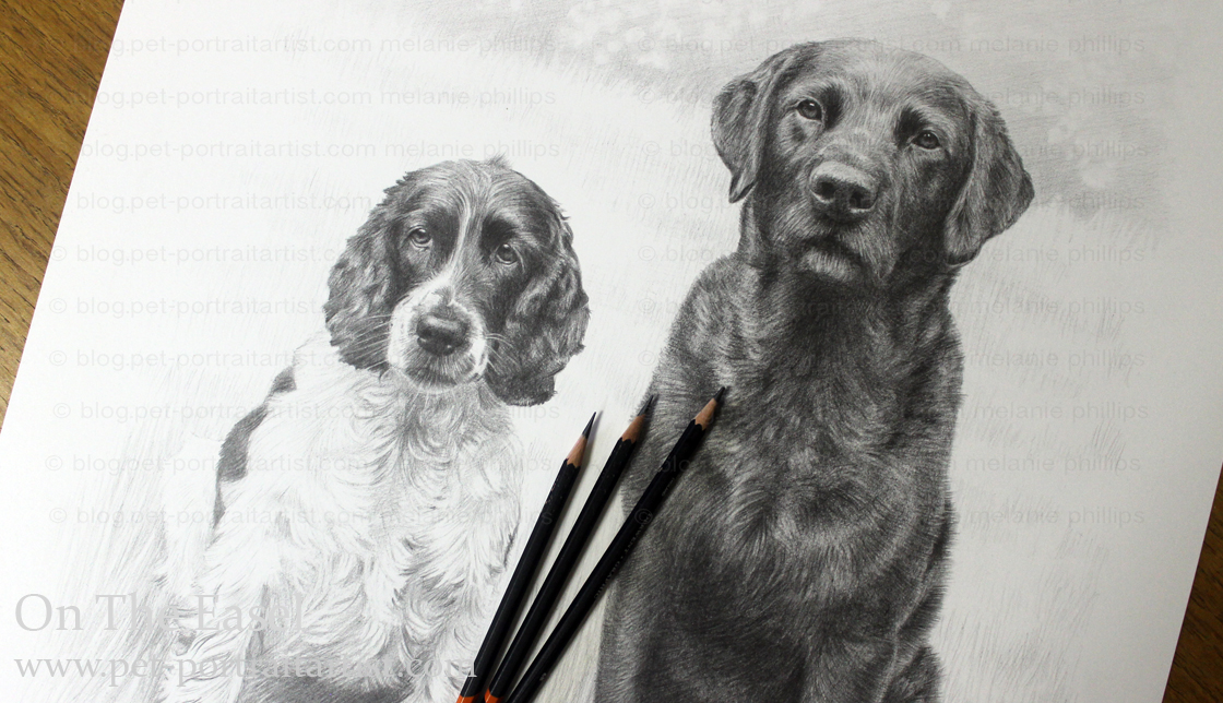 Double Dog Pencil Pet Portraits