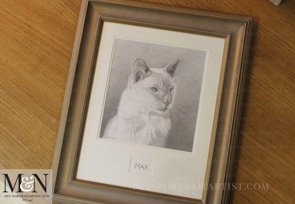 Cat Portrait Max Framed