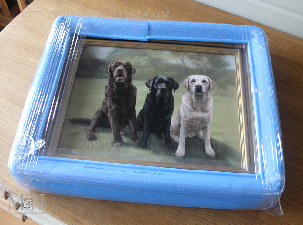 Oil Portrait of Maco, Rex & Rosie