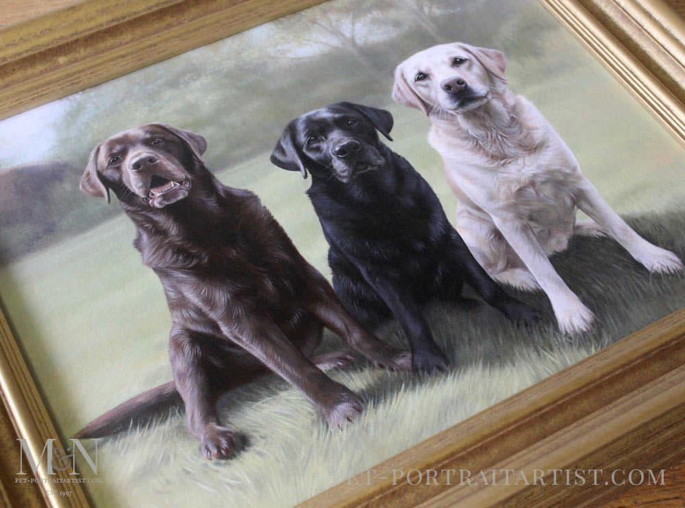 Oil Portrait of Maco, Rex & Rosie