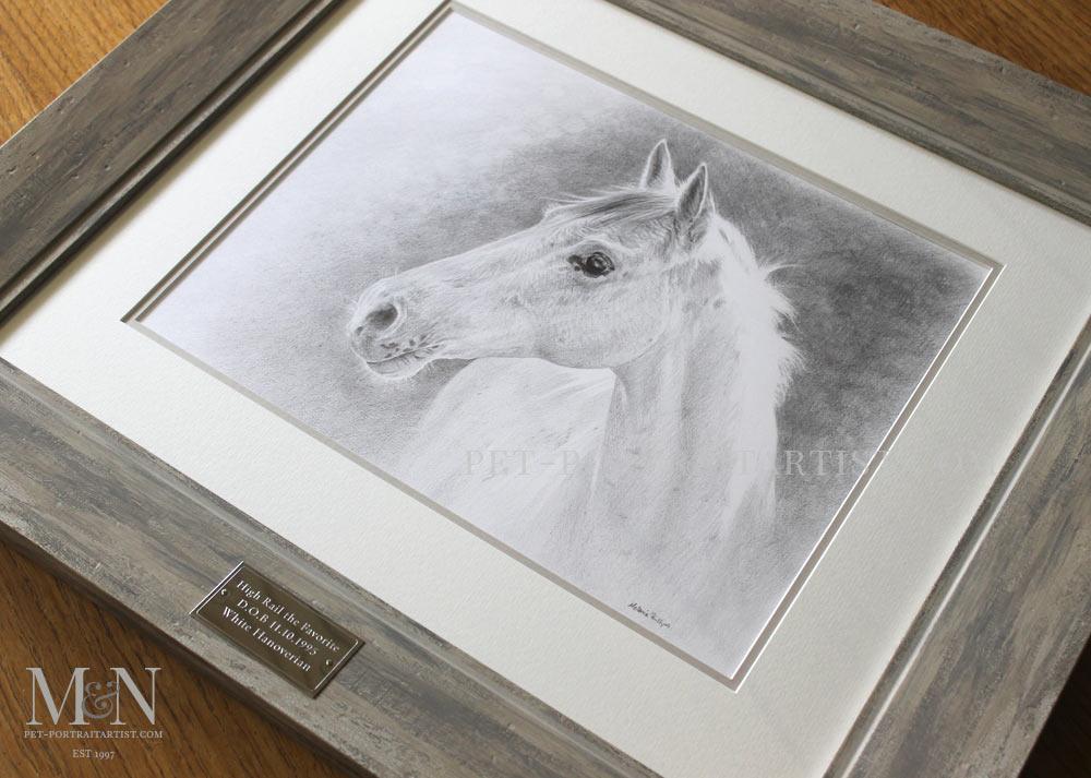 Horse Pet Portrait of Favorite