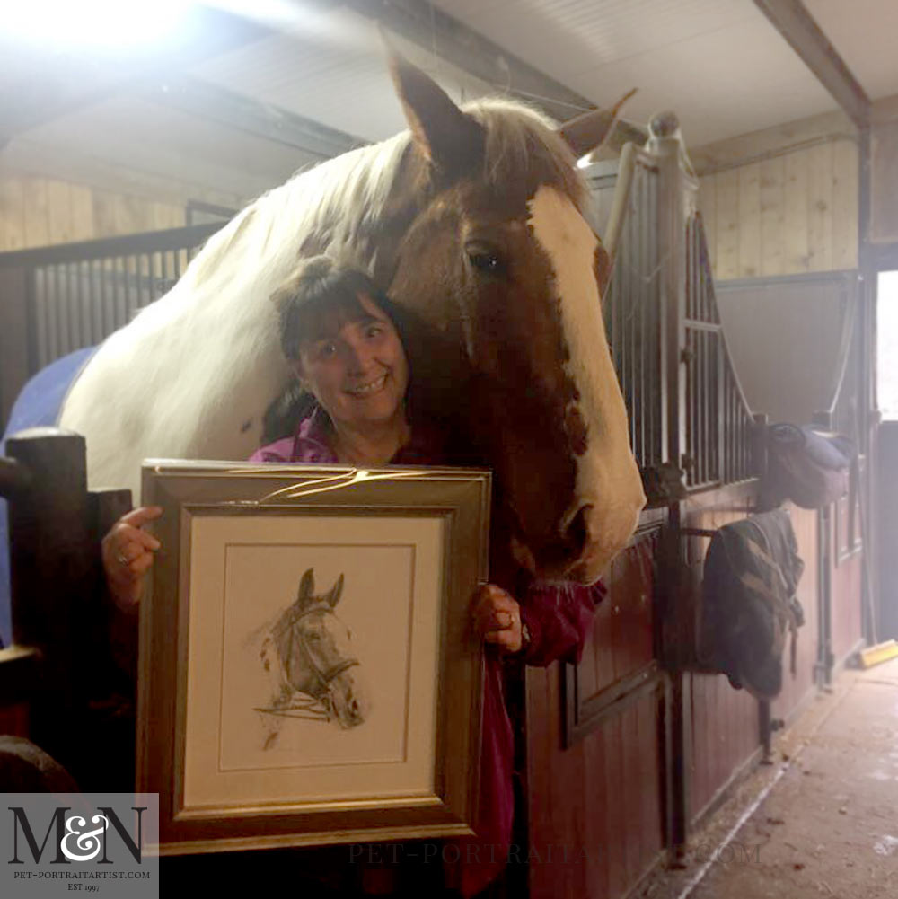 Horse Portrait Framed