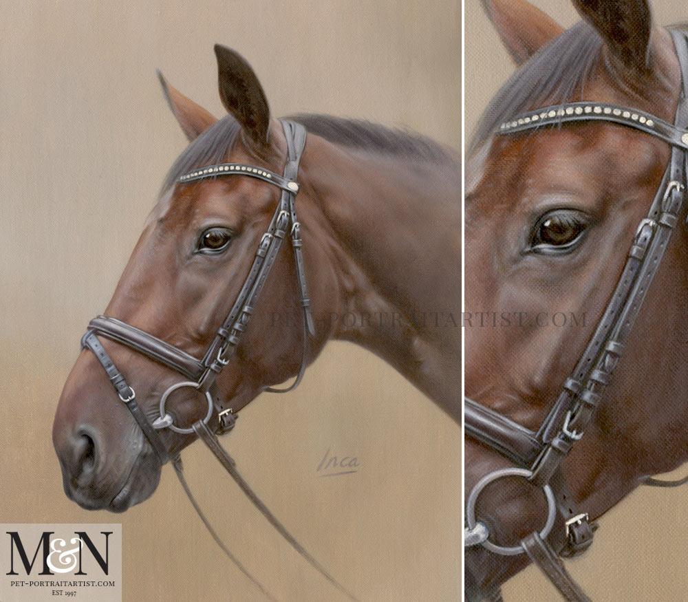 Horse Portrait of Inca