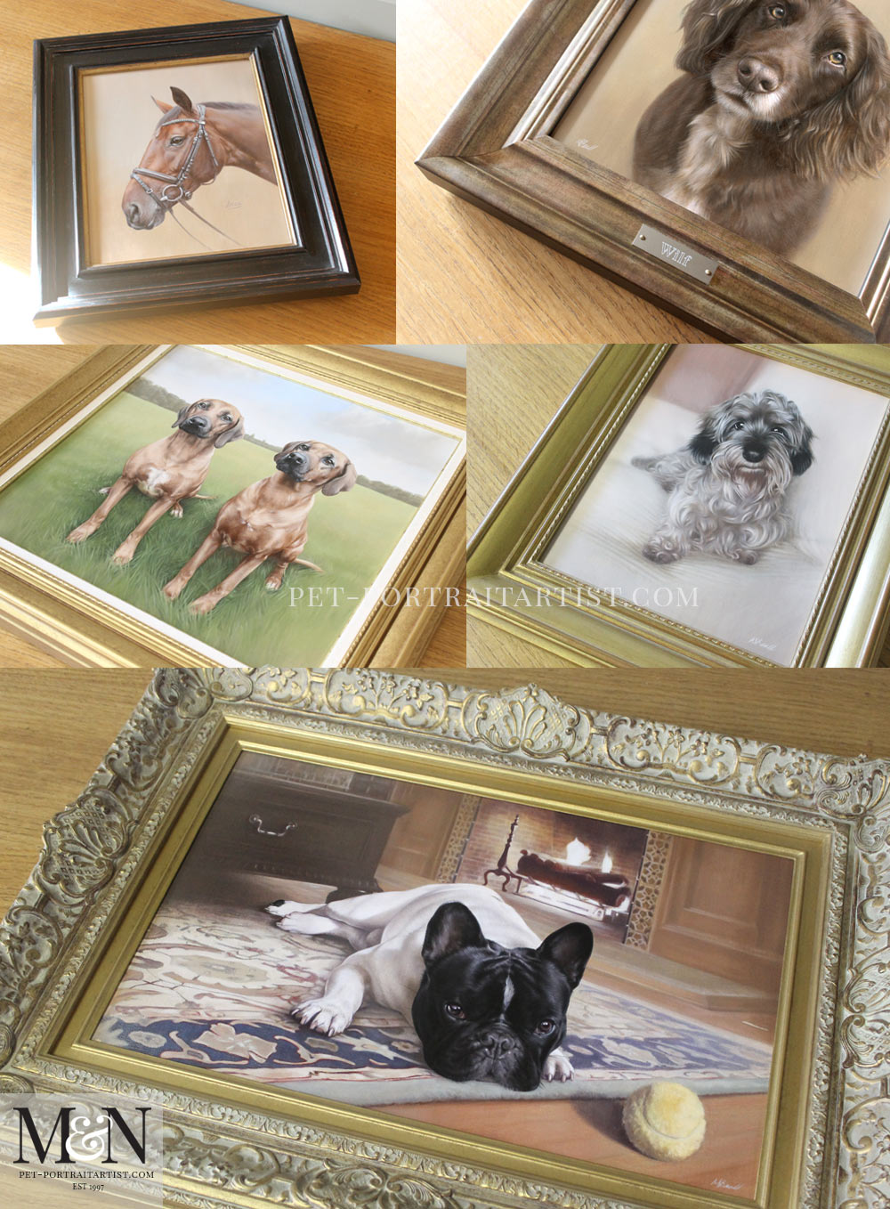 Introducing Our Pet Portraits oil pet portraits Nicholas Beall