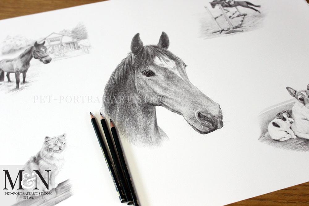 Horse Pencil Portrait Montage