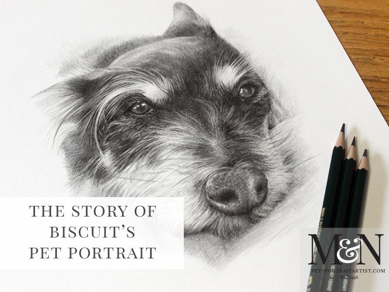 Pencil Drawing Pet Portrait