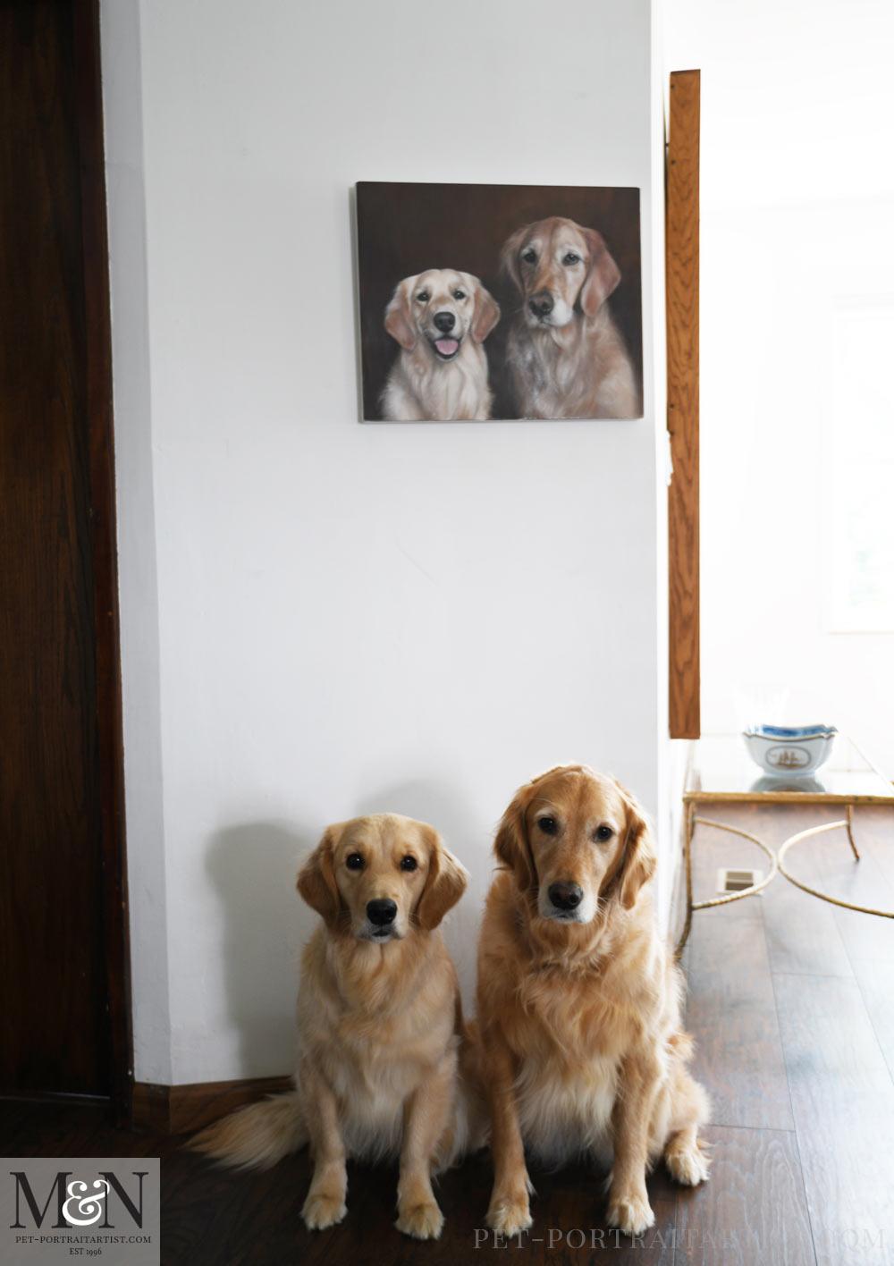 Golden Retriever Oil Pet Portrait