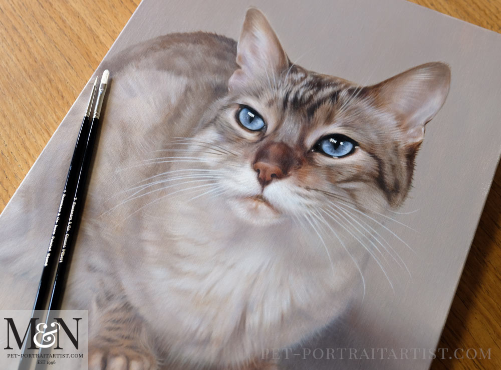 Cat Pet Portraits in Oils