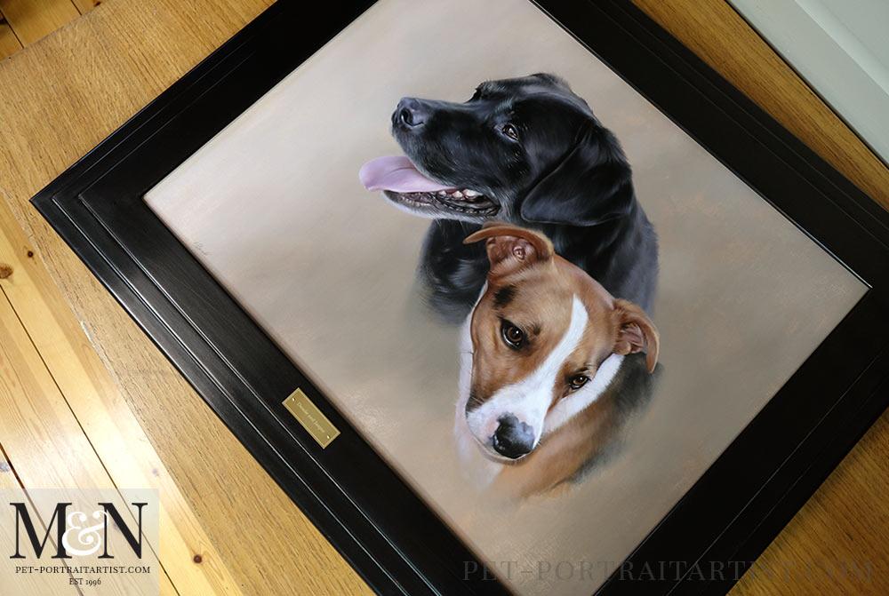 Dog Portrait of Dessie and Jasper