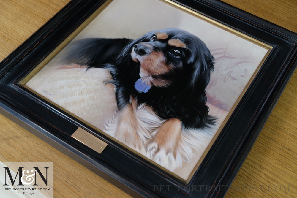 King Charles Spaniel Framed with an Engraved Plaque