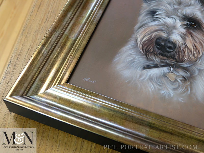Oil Portrait of Blu Framed