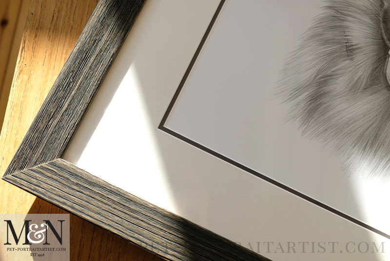 Alsatian Pencil Drawing Framed
