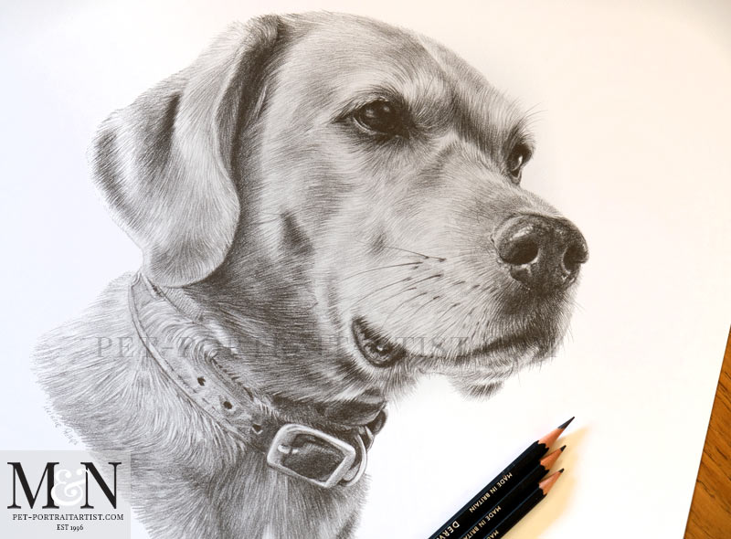 Rusty's Pencil Portrait