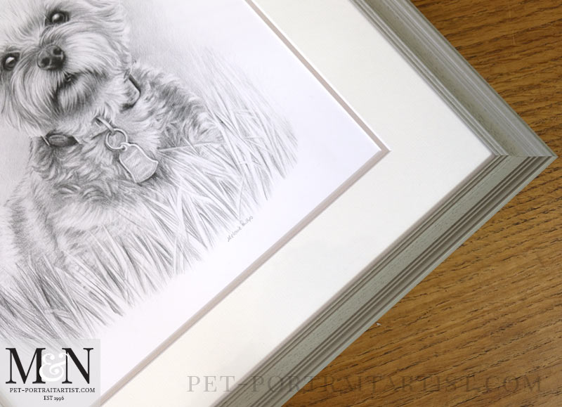 Pencil Portrait Of Chloe Framed