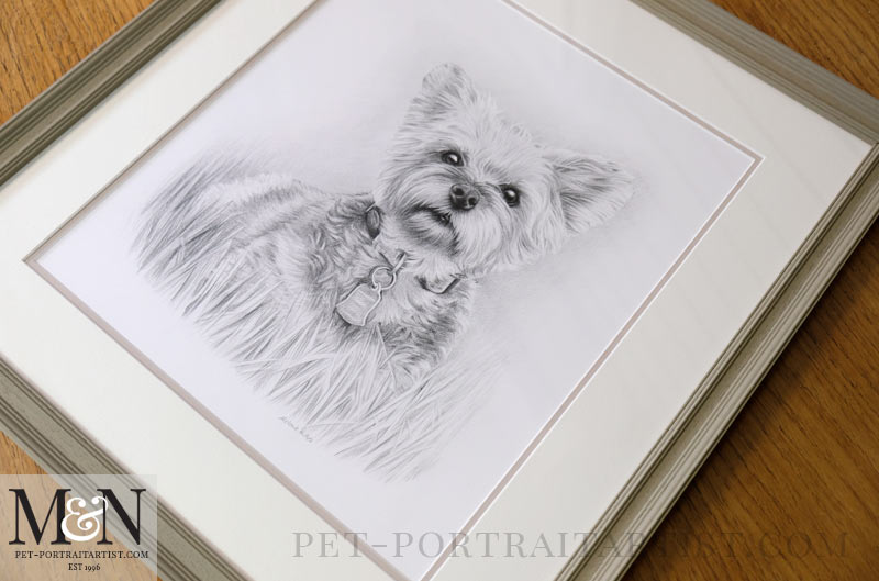 Drawing of Chloe framed by Amanda