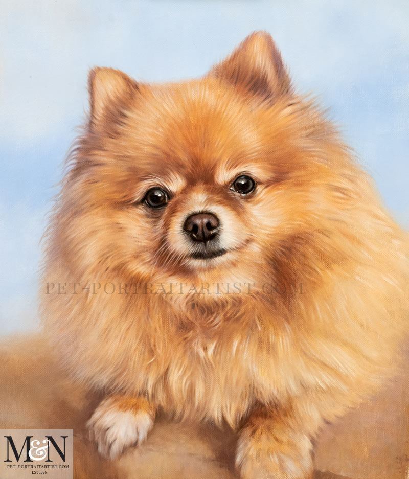 Oil Pet Portrait of Boo