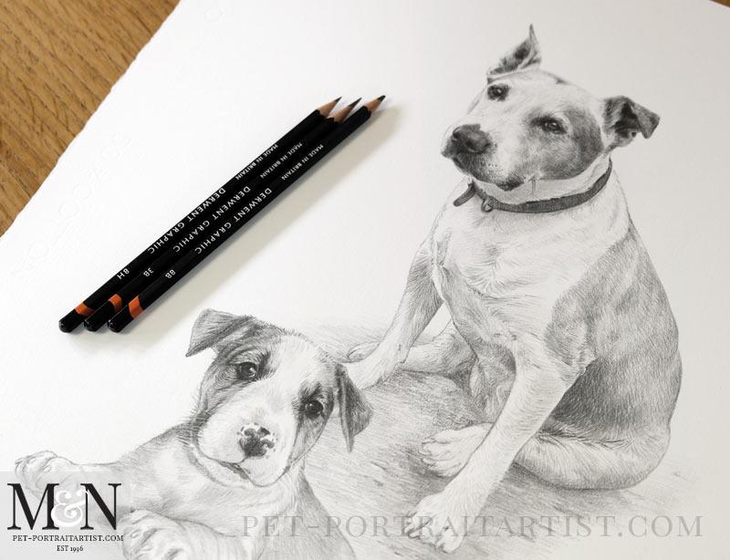 Pencil Drawing Of Ellie