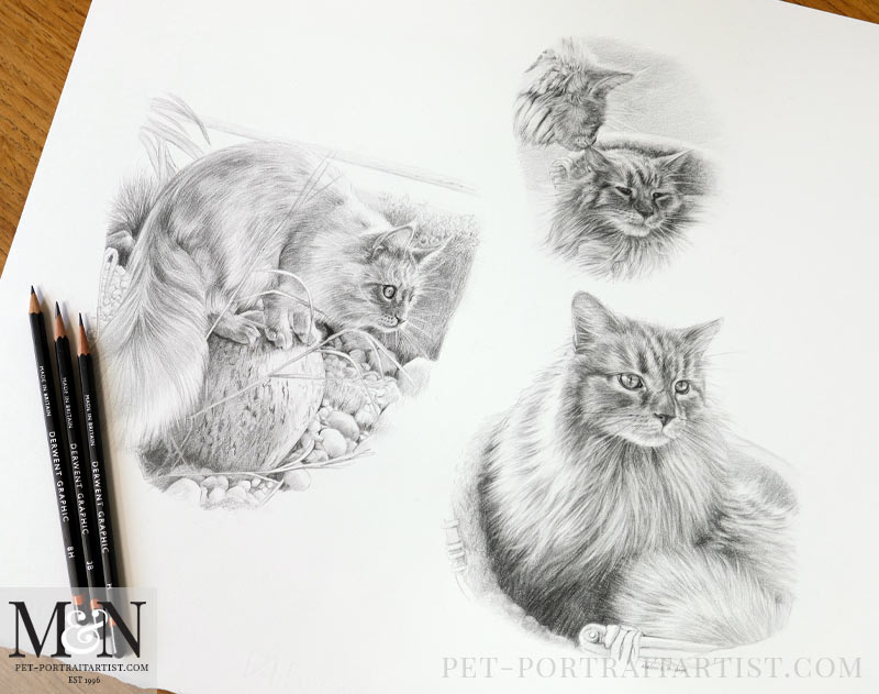 The full drawing with pencils