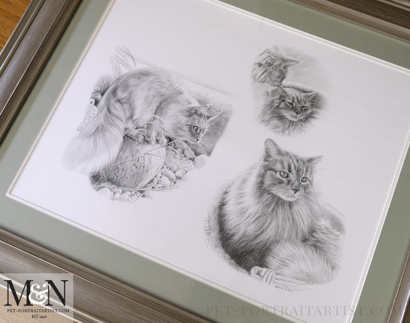 Full pencil drawing framed