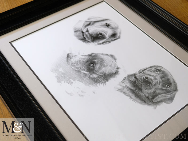 Lastly the Framed Dog Portrait in full