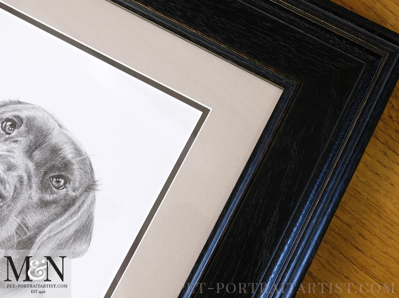 Framed Dog Portrait