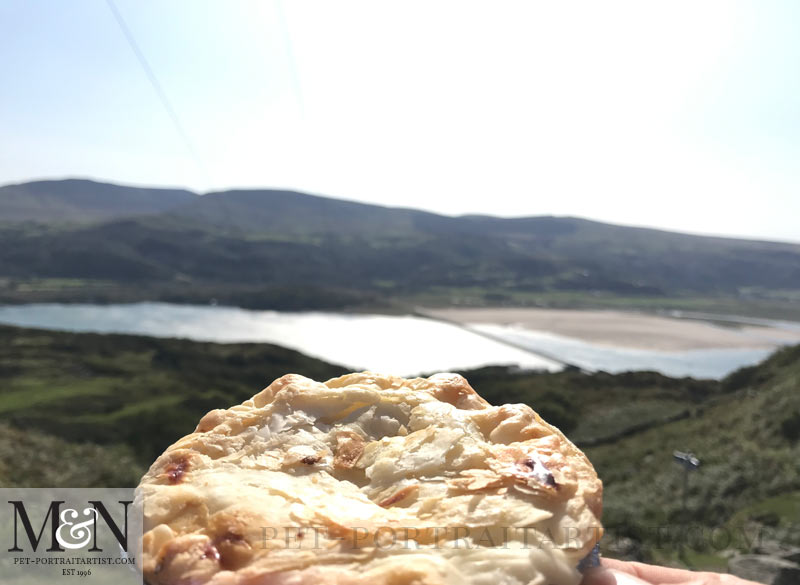 Lunch - hand made pie overlooking Barmouth