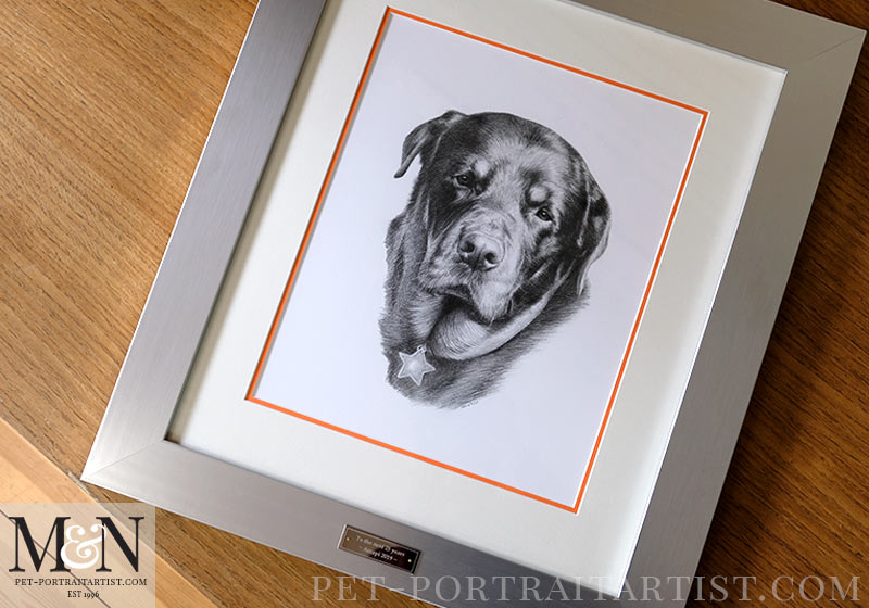 The full pencil portrait framed