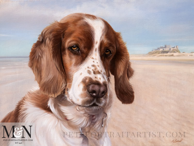 Spaniel Oil Portrait of Millie