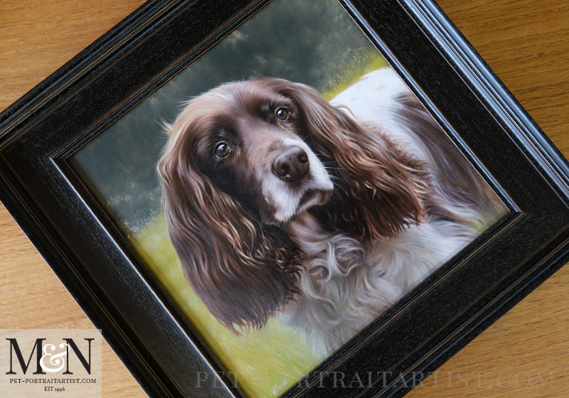 Spaniel Pet Portraits Framed