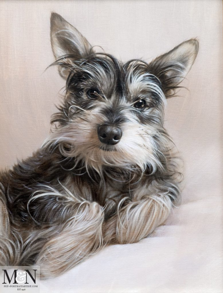 Oil Pet Portrait of Chucho