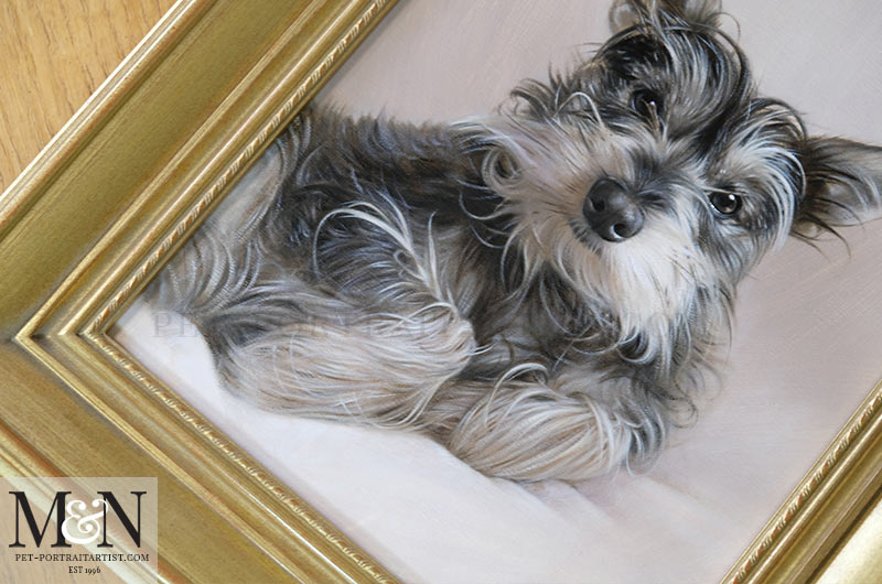 Oil Pet Portrait of Chucho Framed